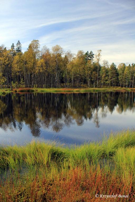 Jezioro_Turzycowe_25_09_2016_030.jpg